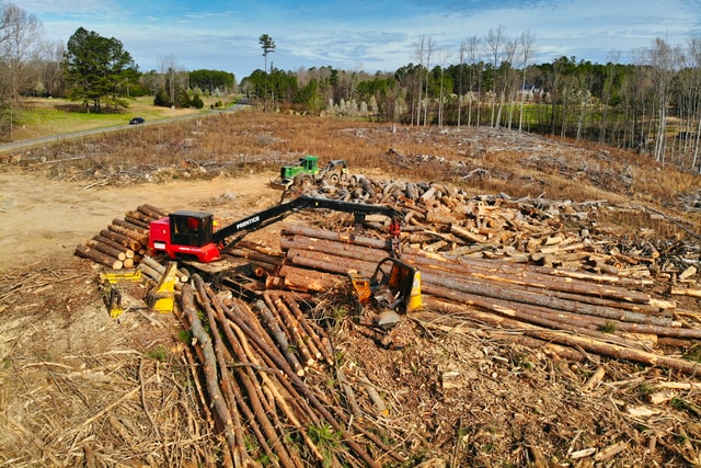 Builders Still Skeptical Even as Lumber Prices Drop