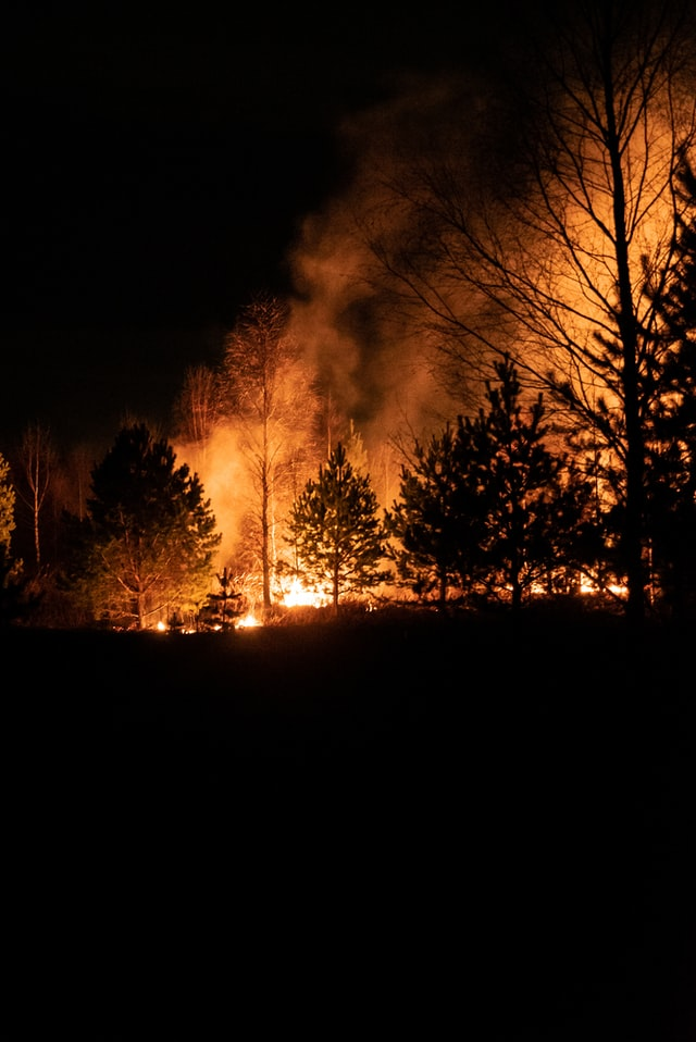 Wildfires Causing Property Insurance Costs to Skyrocket